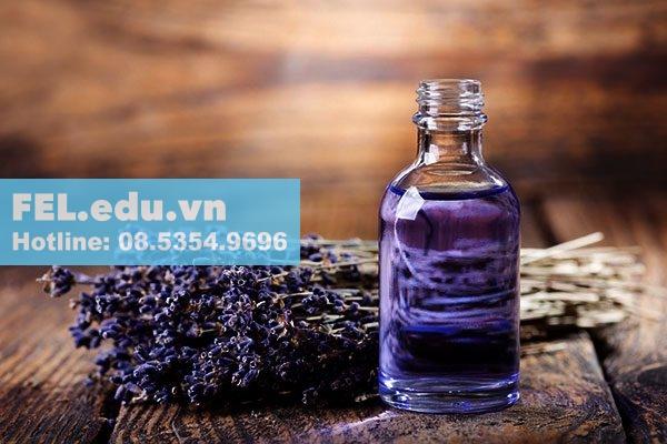 Tinh dầu Oải hương xông phòng