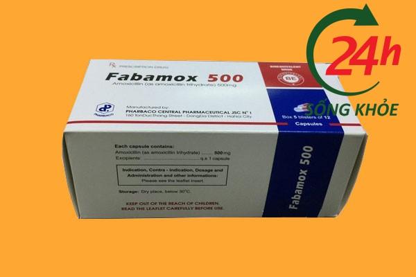 Thuốc Fabamox 500