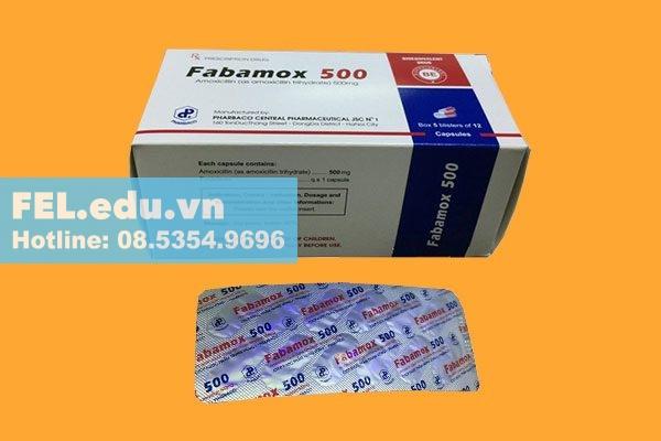 Thuốc Fabamox 500 là thuốc gì?