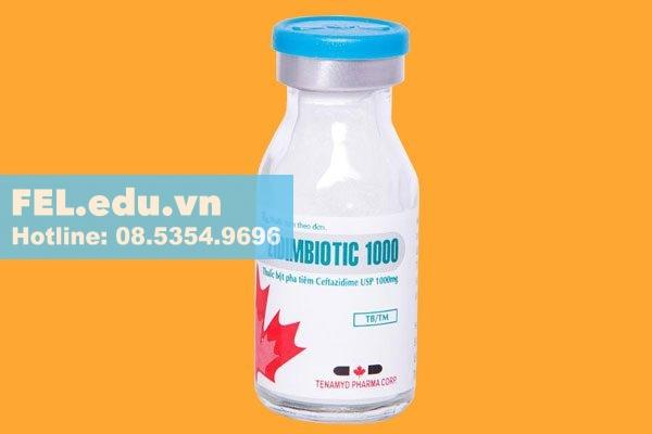Công dụng - chỉ định của thuốc Zidimbiotic 1000