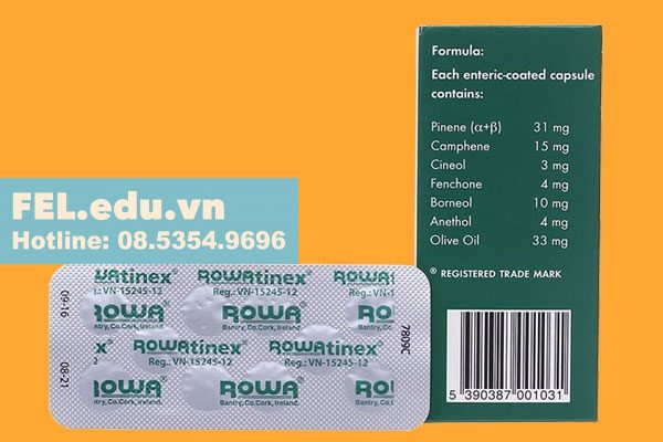 Công dụng - Chỉ định của thuốc Rowatinex