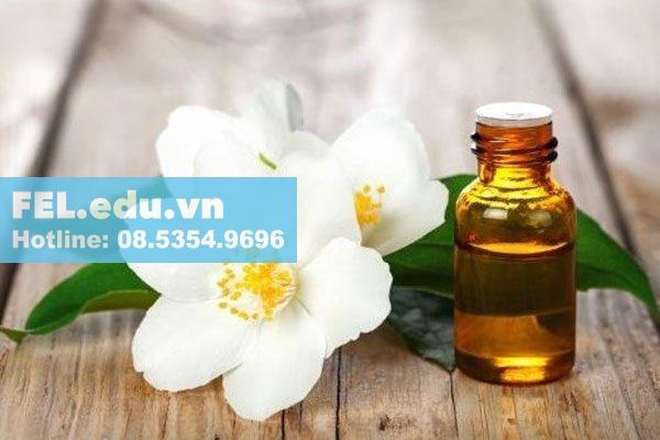 Tinh dầu hoa nhài là gì?