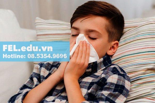 tinh dầu sả Java giảm triệu chứng bệnh hô hấp
