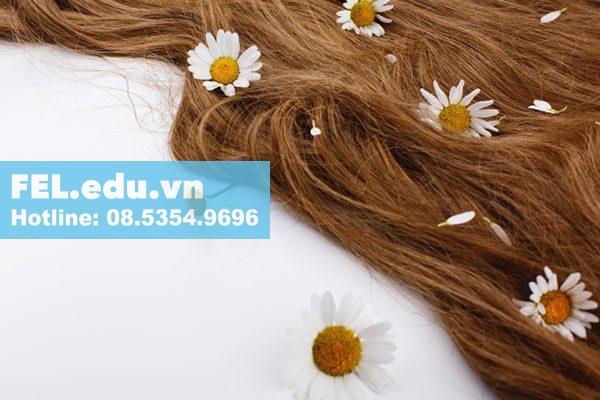 Dưỡng chất chăm sóc tóc hiệu quả
