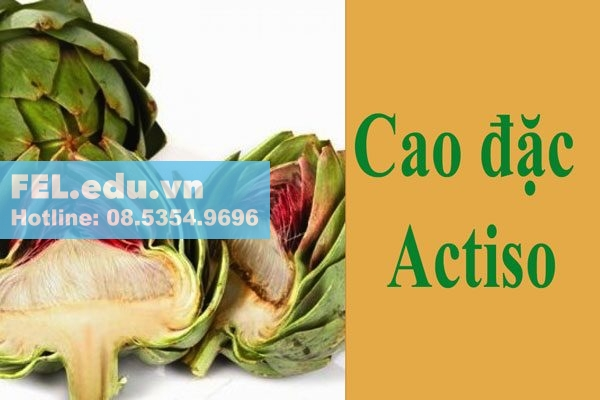 Cao đặc Actiso trong Alcofree