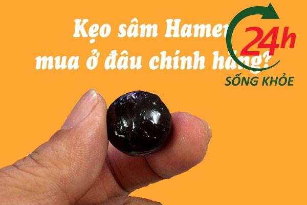 Kẹo sâm Hamer bán ở đâu chính hãng