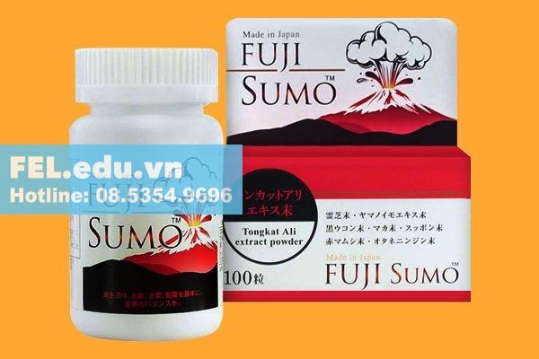 Fuji sumo là gì?