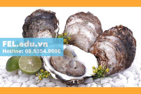 Tinh chất hàu Oyster plus có tốt không?