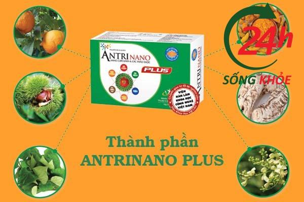 Thành phần Antrinano Plus