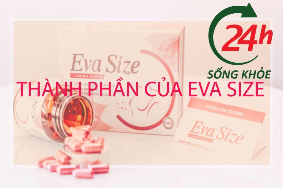 Thành phần của Eva Size