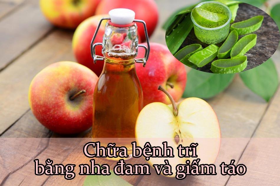 Chữa bệnh trĩ bằng nha đam và giấm táo