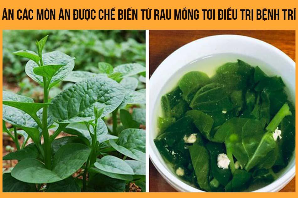 Ăn các món ăn được chế biến từ rau mồng tơi điều trị bệnh trĩ