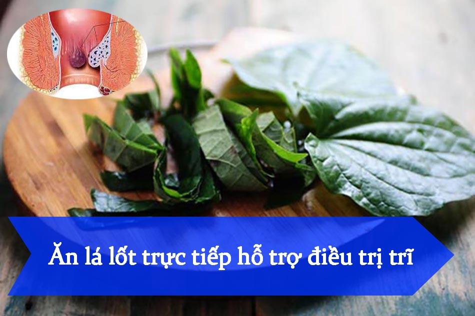 Ăn lá lốt trực tiếp hỗ trợ điều trị trĩ