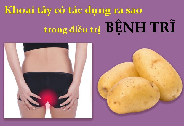 Khoai tây có tác dụng ra sao trong điều trị bệnh trĩ
