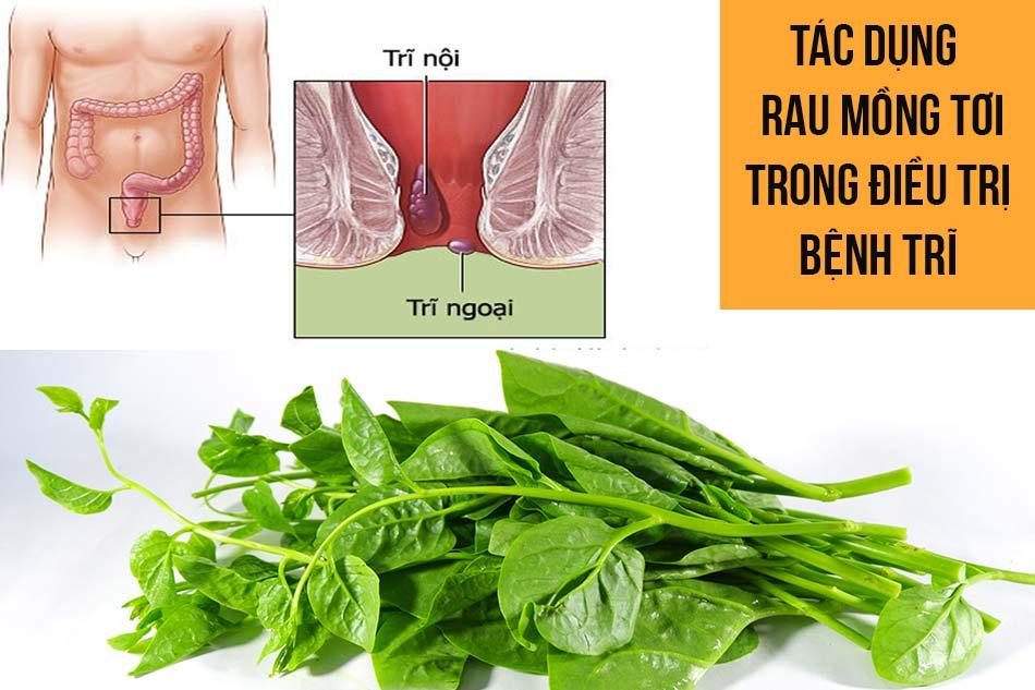 Tác dụng của rau mồng tơi trong điều trị bệnh trĩ