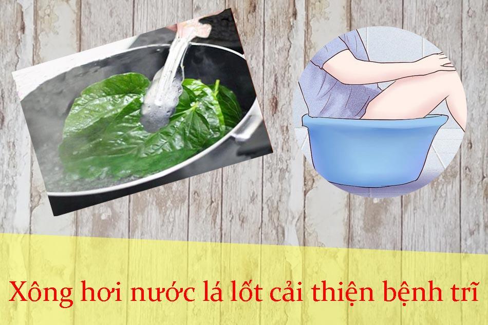 Xông hơi nước lá lốt cải thiện bệnh trĩ